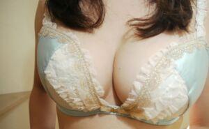 news4vip 1615091119 101 300x185 - 【画像】 女を乳だけで判断しない方がいい